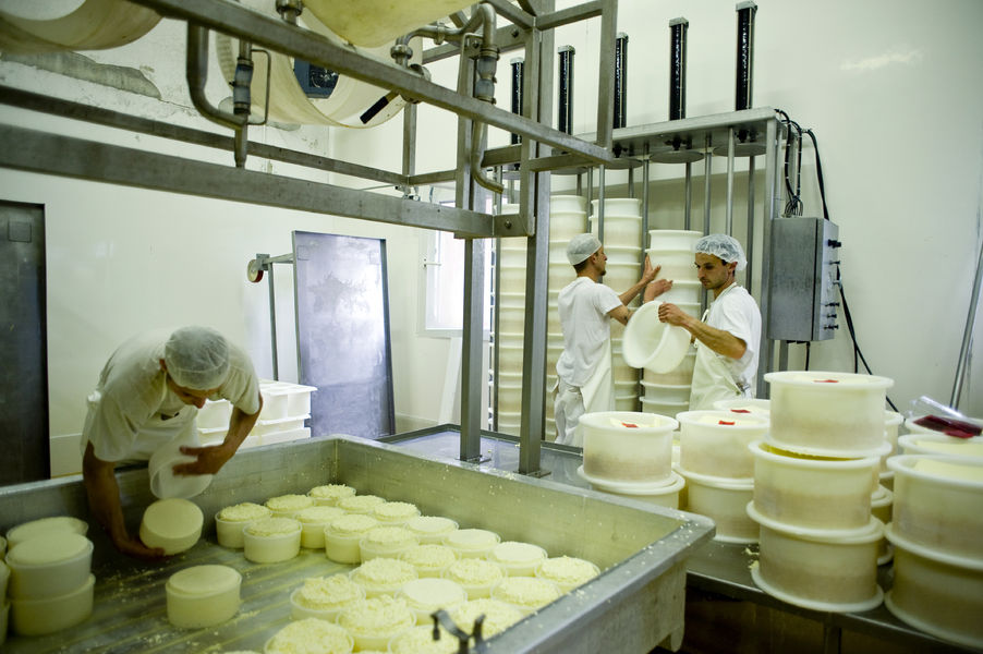 http://www.radio-couleur-chartreuse.org/wp-content/uploads/2020/02/fabrication-fromage.jpg